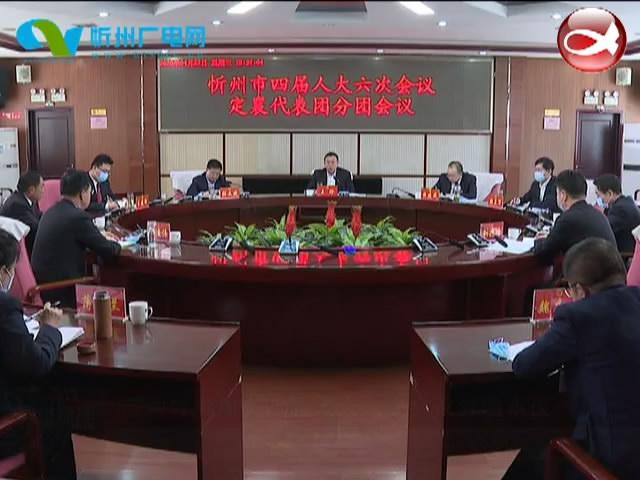市领导参加市四届人大六次会议分团审议